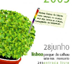 portfolio-img-167
